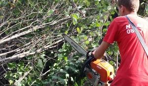 Почиства дворове в София и региона